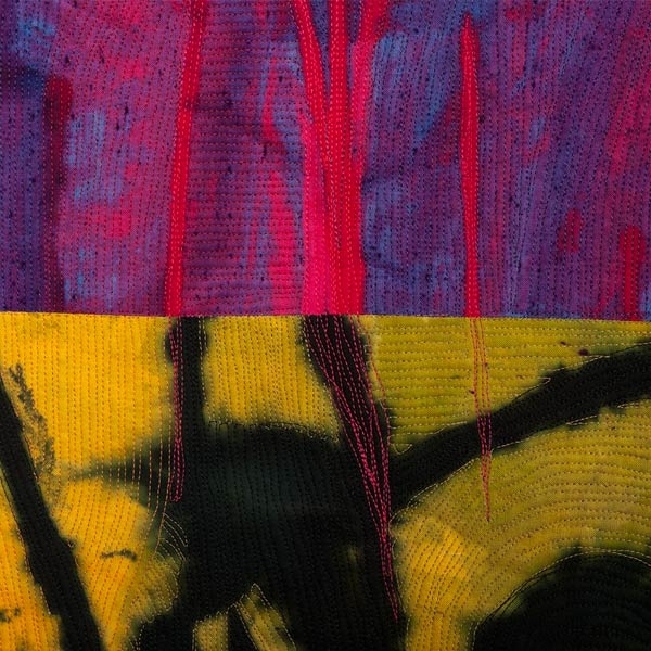 Willoughby,-Jayne_Veiled-Confusion-(side-B-Detail)_square